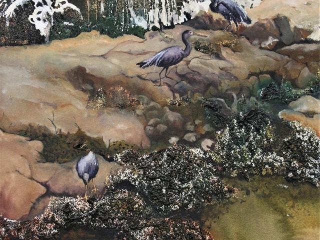 Seaside Fossikers